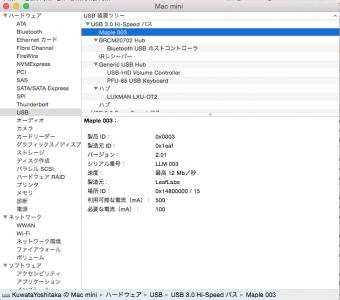 OSX-Maple